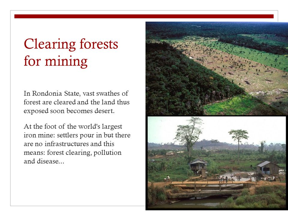 Clearing forests for mining