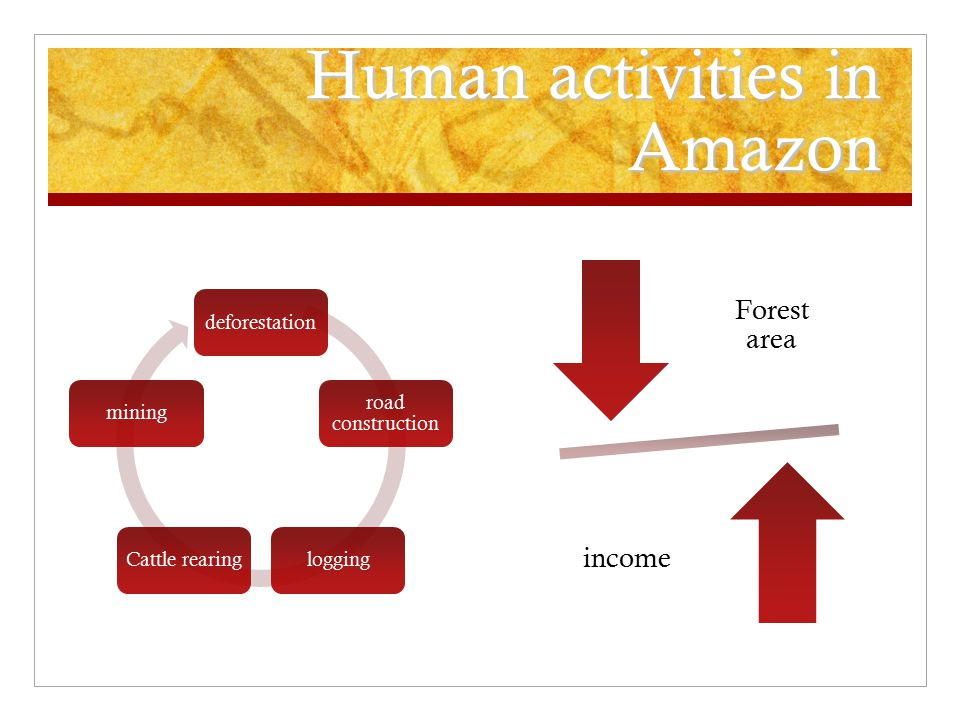 Human activities in Amazon