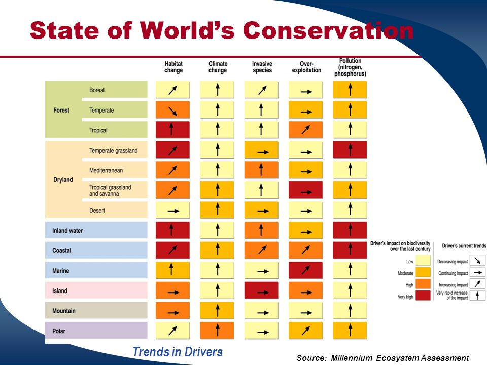 State of World's Conservation