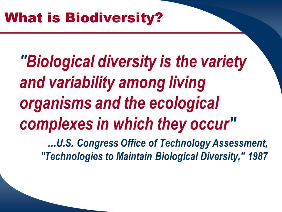 What is Biodiversity Biological diversity is the variety and variability among living organisms and the ecological complexes in which they occur