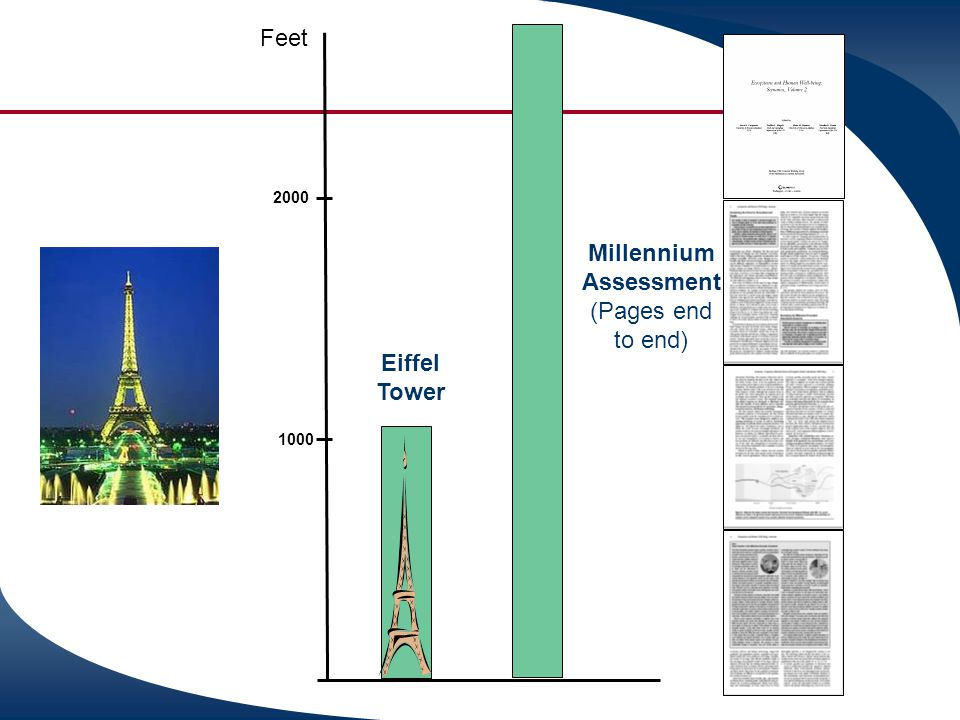 Millennium Assessment (Pages end to end)
