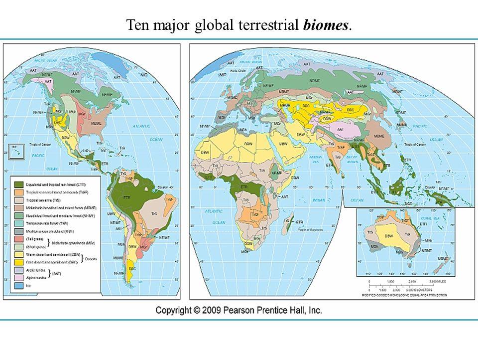 Ten major global terrestrial biomes.