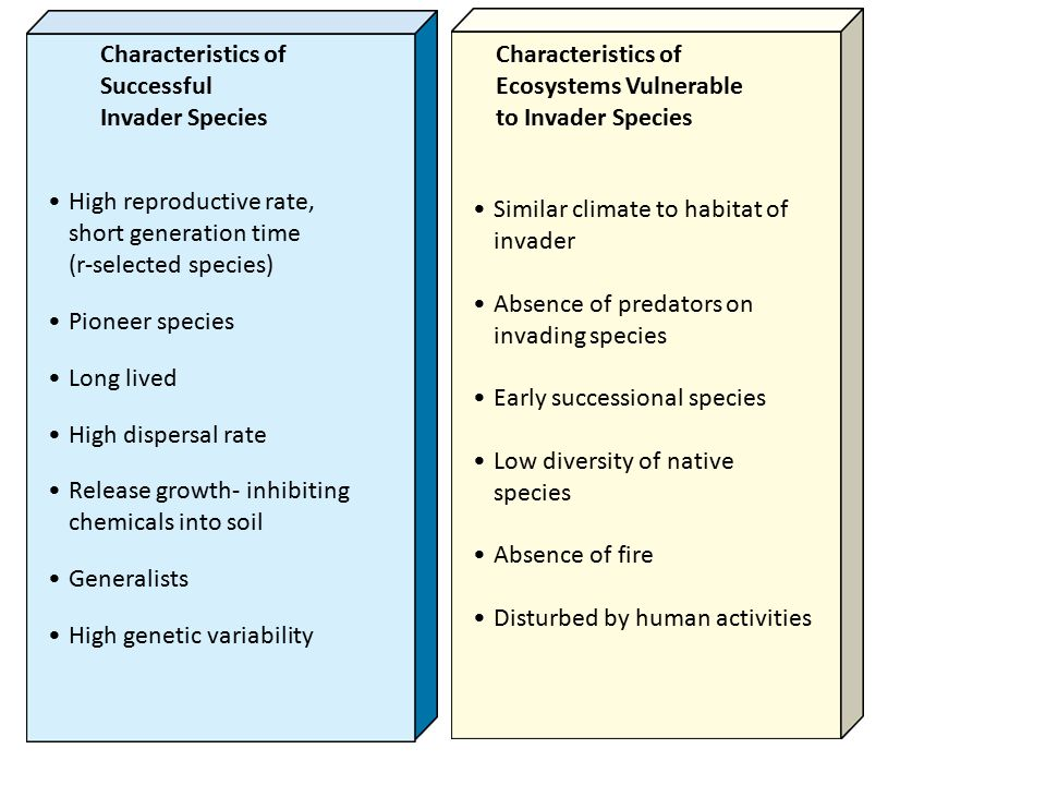 Characteristics of Successful. Invader Species. Characteristics of. Ecosystems Vulnerable. to Invader Species.