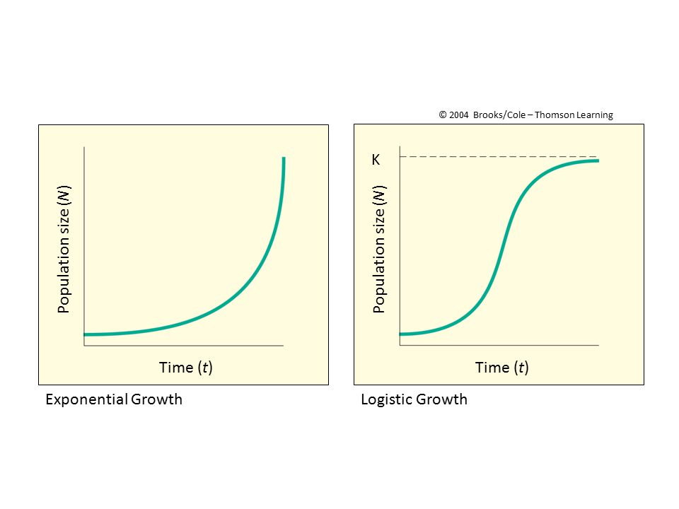 K Population size (N) Population size (N) Time (t) Time (t)