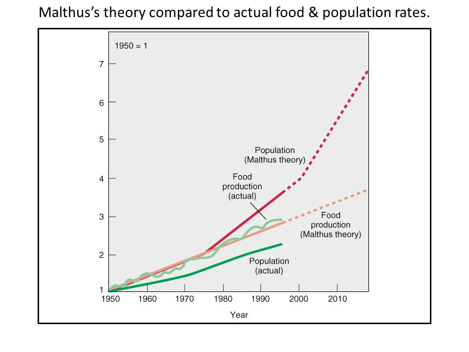 Malthus's theory compared to actual food & population rates.