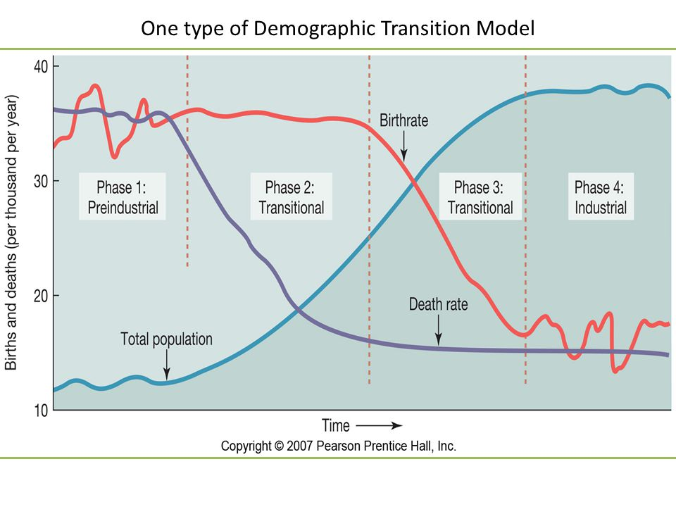 One type of Demographic Transition Model