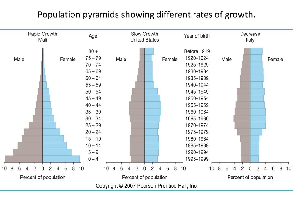 Population pyramids showing different rates of growth.
