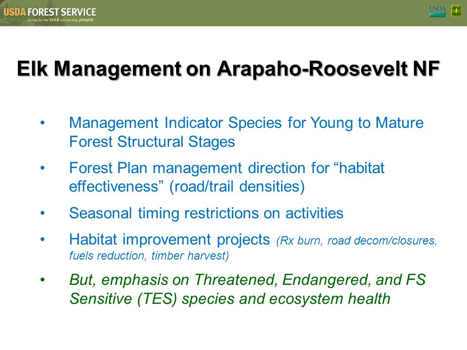 Elk Management on Arapaho-Roosevelt NF