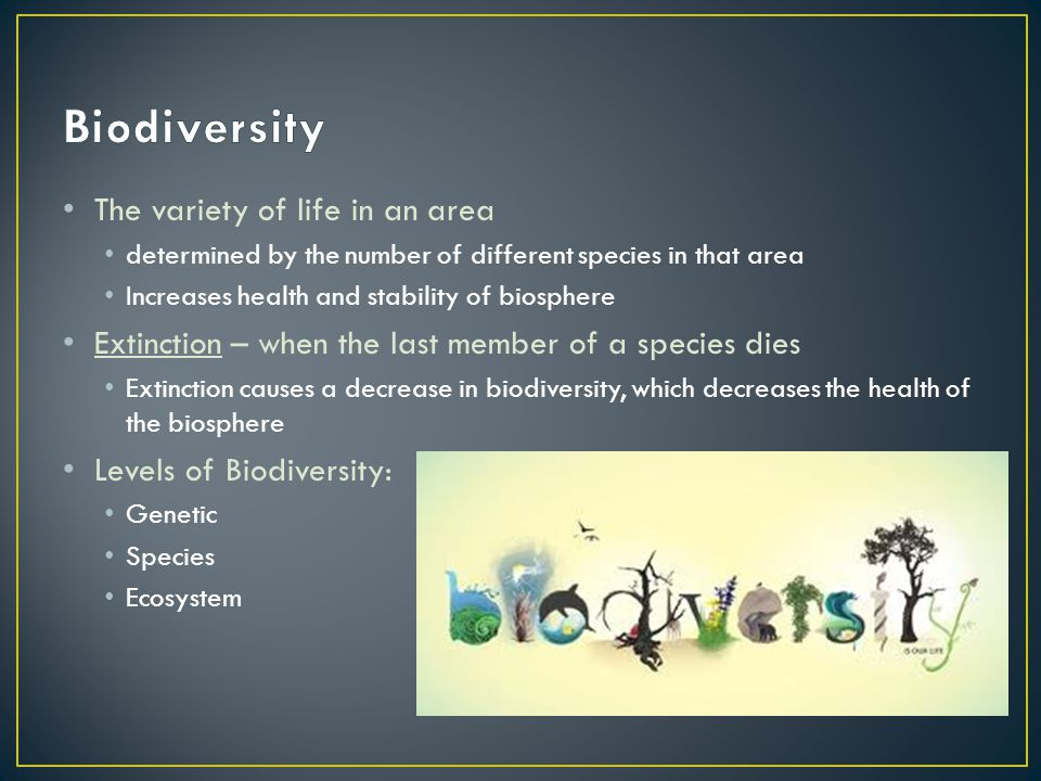 Biodiversity The variety of life in an area