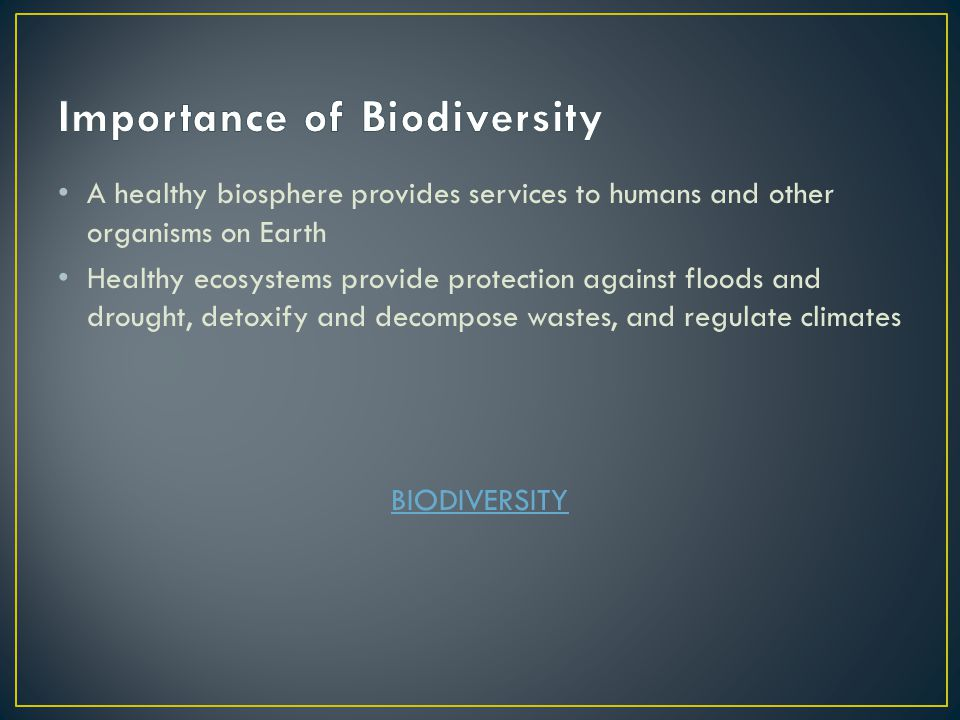 Essay on biodiversity importance threats and conservation