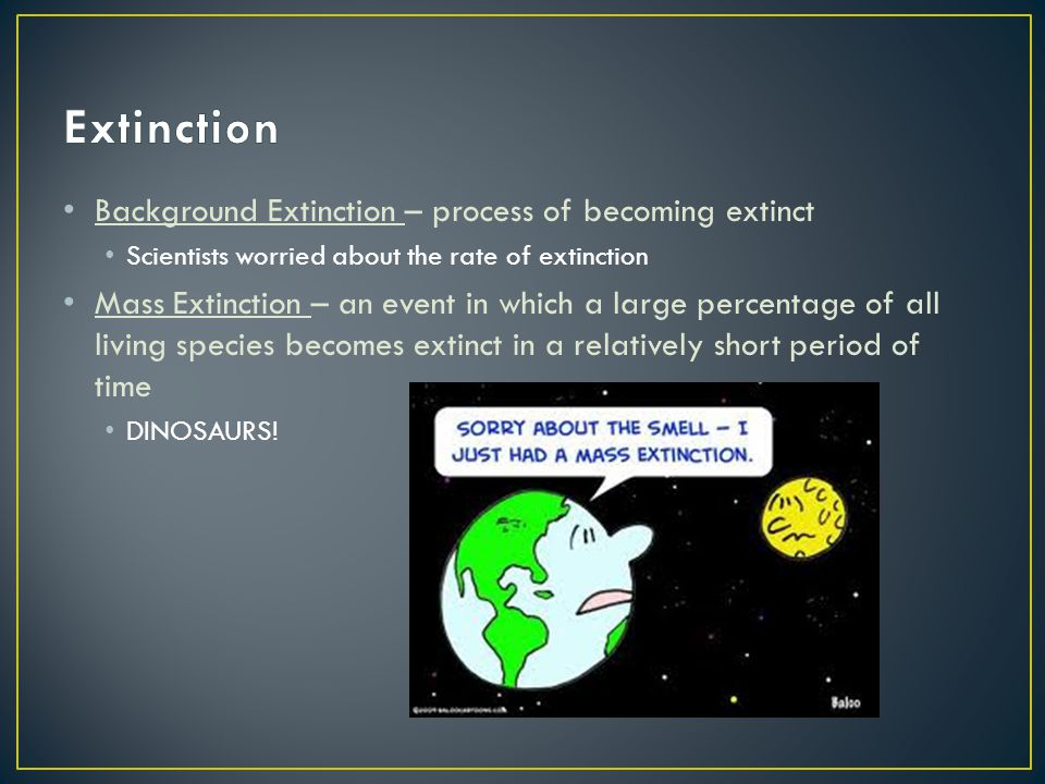 Extinction Background Extinction – process of becoming extinct