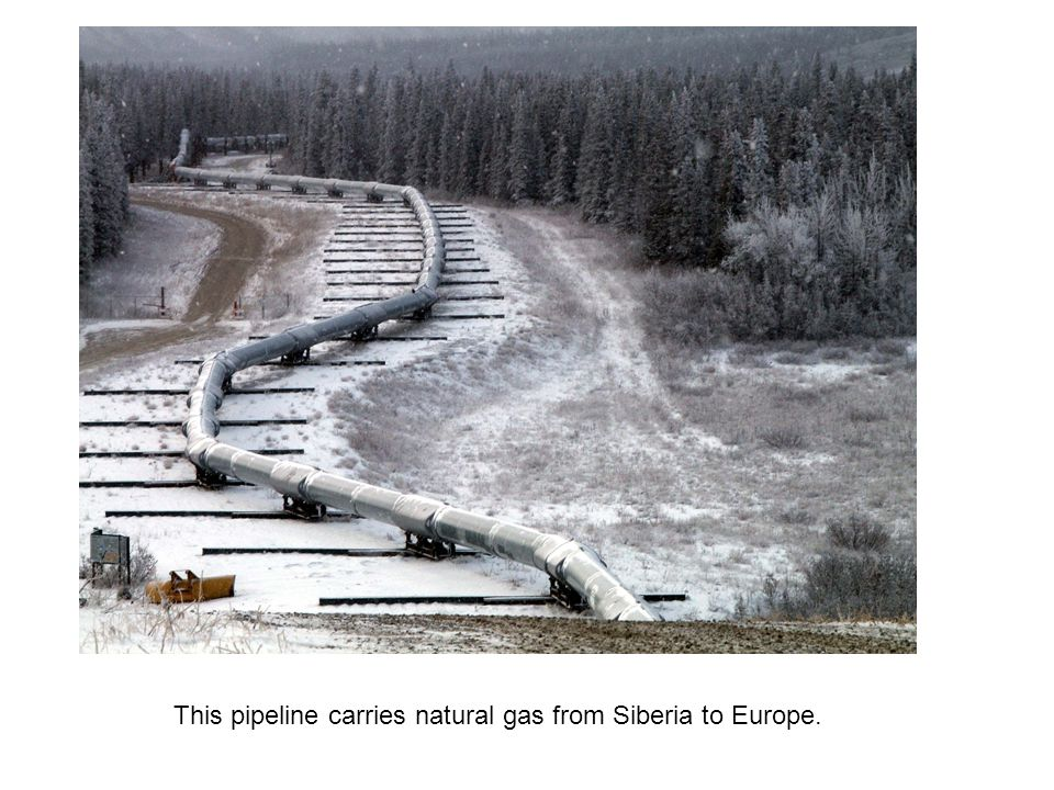 This pipeline carries natural gas from Siberia to Europe.