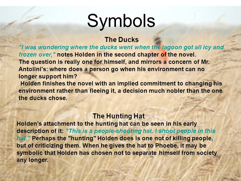Symbols The Ducks The Hunting Hat