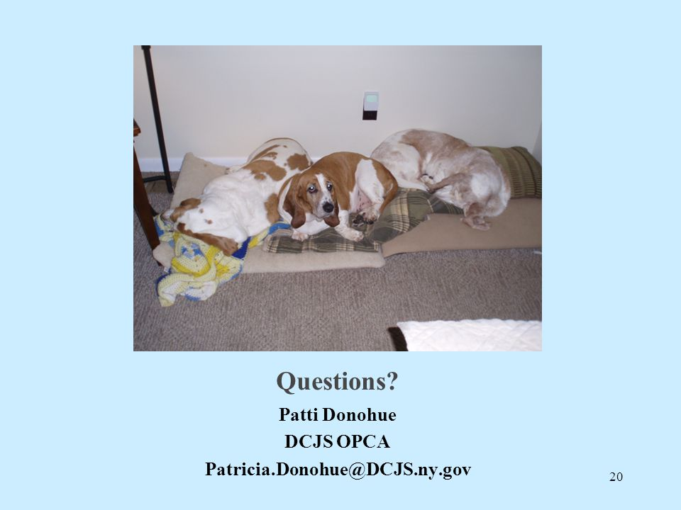 Questions Patti Donohue DCJS OPCA Patricia.Donohue@DCJS.ny.gov