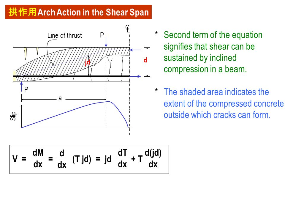 拱作用Arch Action in the Shear Span