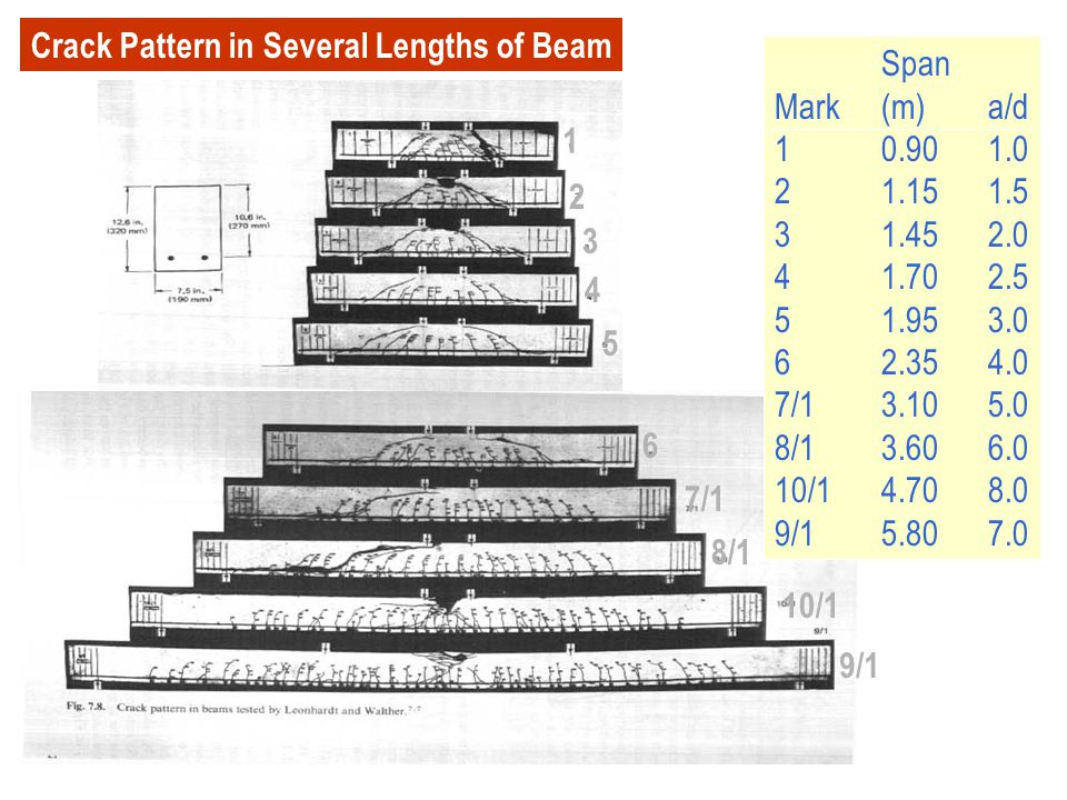 Crack Pattern in Several Lengths of Beam