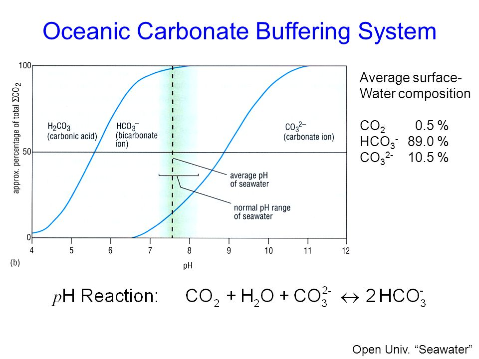 Oceanic Carbonate Buffering System