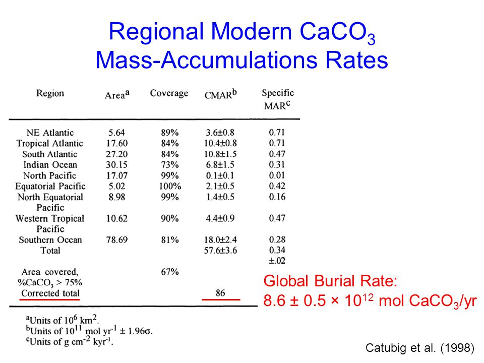 Regional Modern CaCO3 Mass-Accumulations Rates