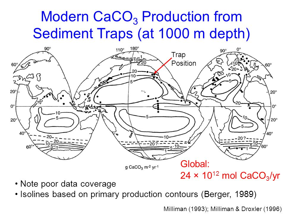 Modern CaCO3 Production from Sediment Traps (at 1000 m depth)