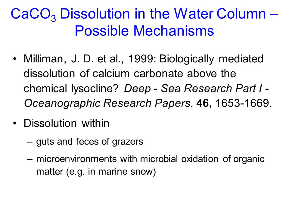 CaCO3 Dissolution in the Water Column – Possible Mechanisms