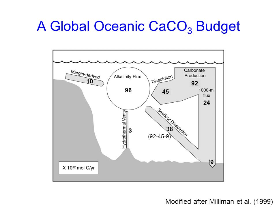 A Global Oceanic CaCO3 Budget