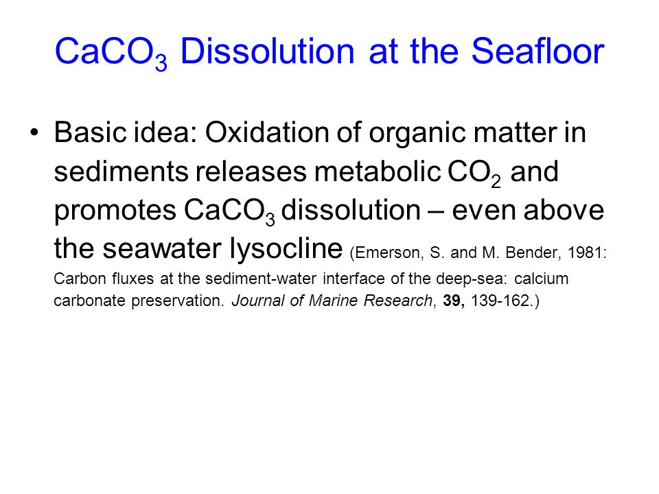CaCO3 Dissolution at the Seafloor