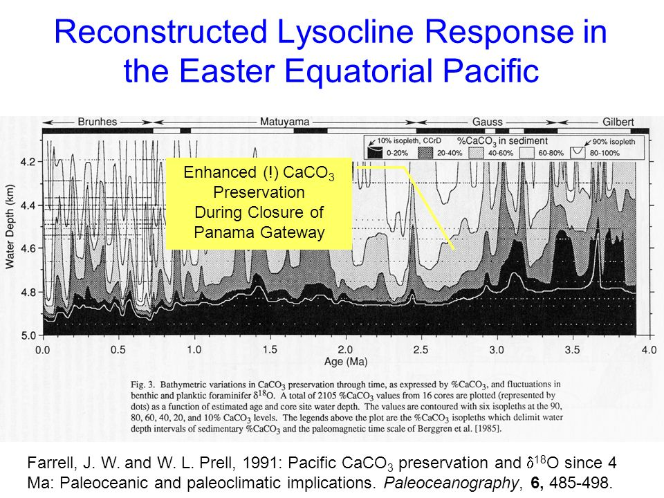 Reconstructed Lysocline Response in the Easter Equatorial Pacific