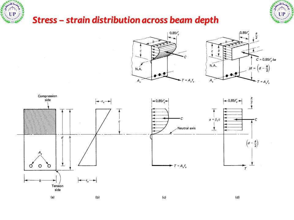 Stress – strain distribution across beam depth
