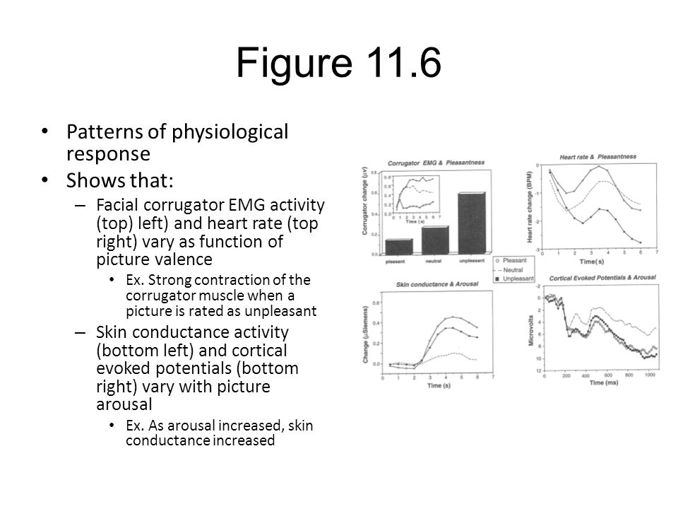 Figure 11.6 Patterns of physiological response Shows that: