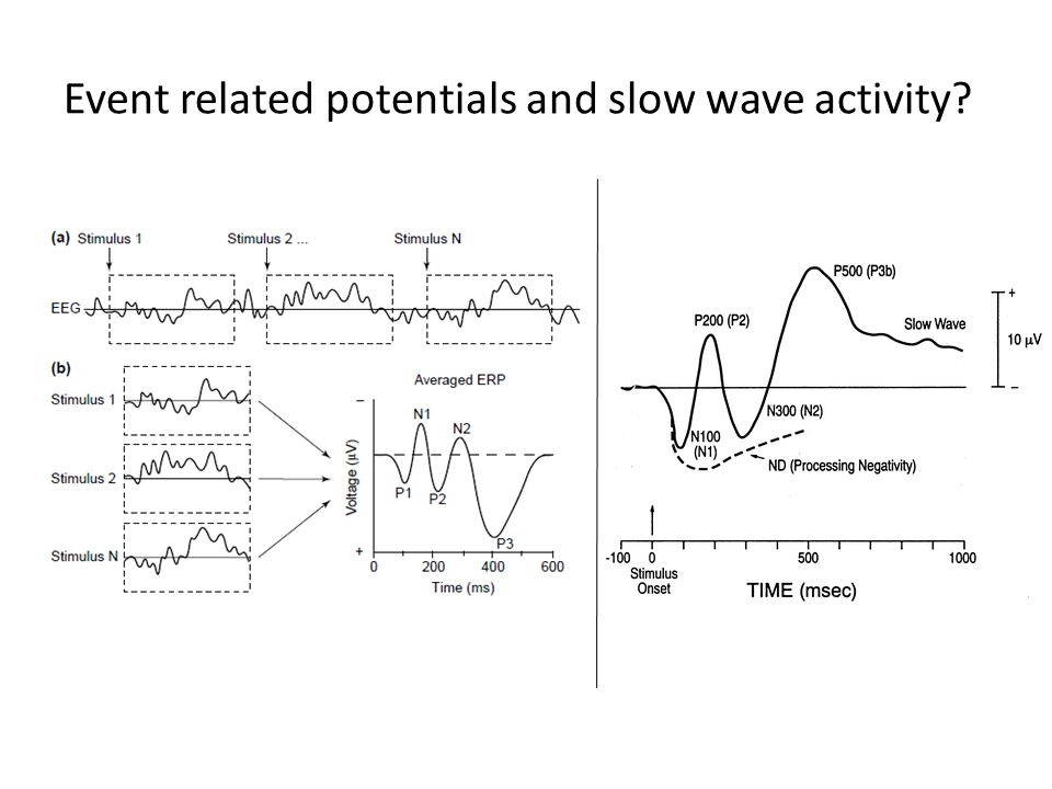 Event related potentials and slow wave activity