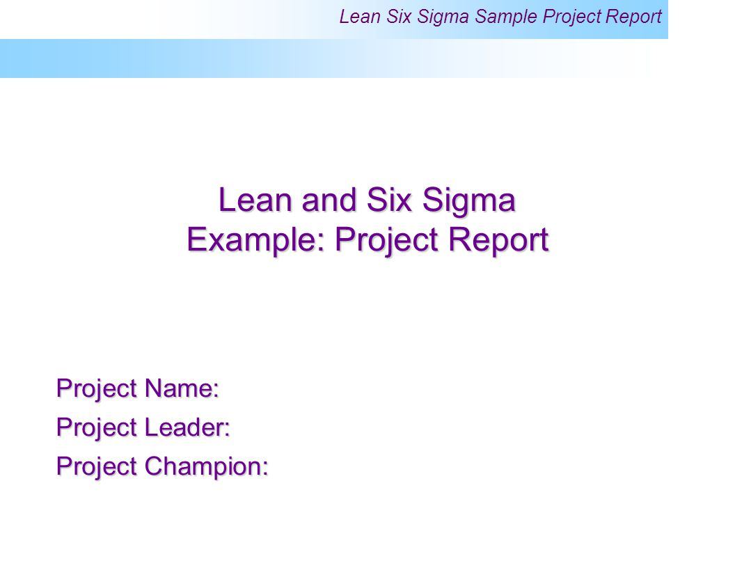 project report example