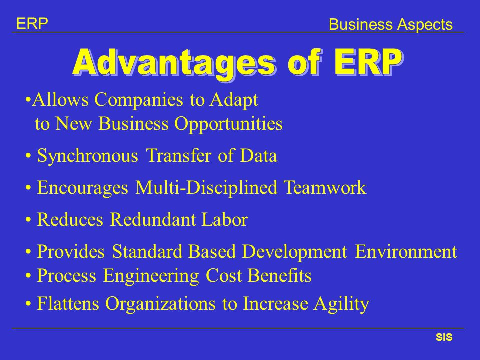 Advantages of ERP Allows Companies to Adapt