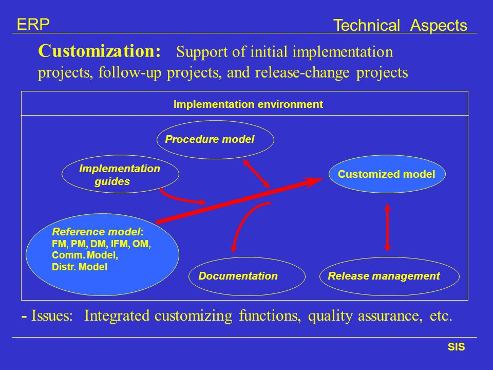 Technical Aspects Customization: Support of initial implementation projects, follow-up projects, and release-change projects.