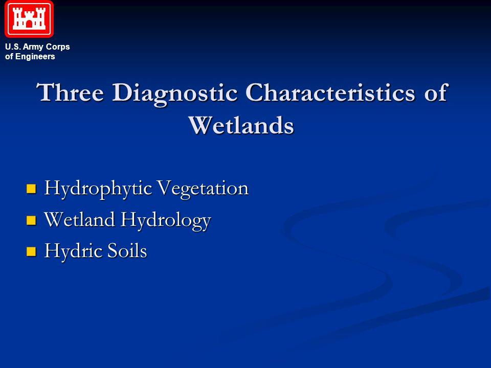 Three Diagnostic Characteristics of Wetlands