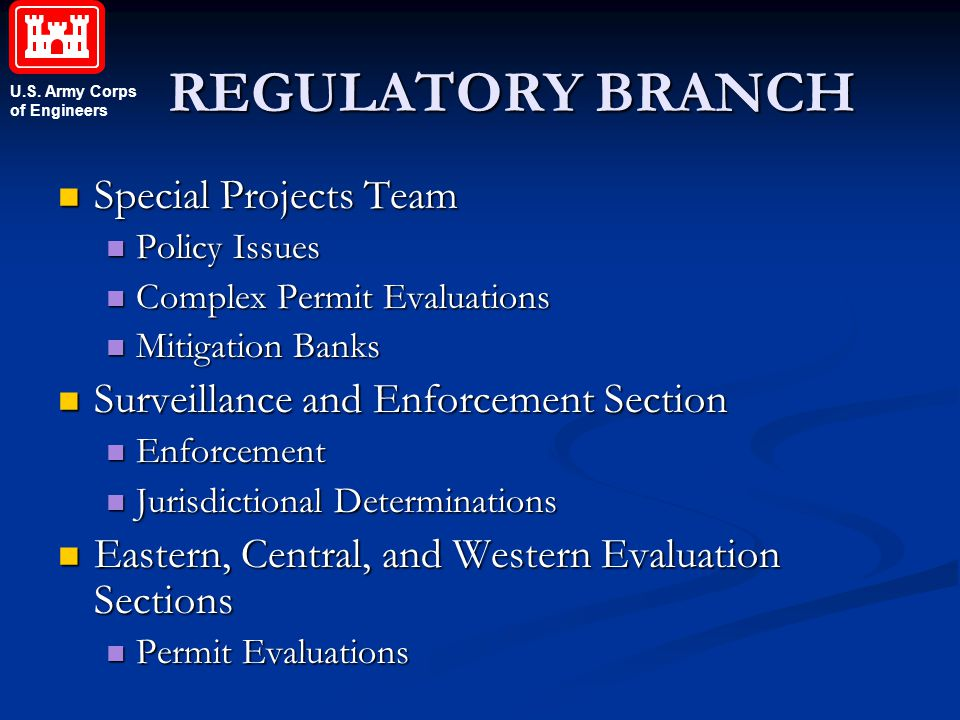 REGULATORY BRANCH Special Projects Team
