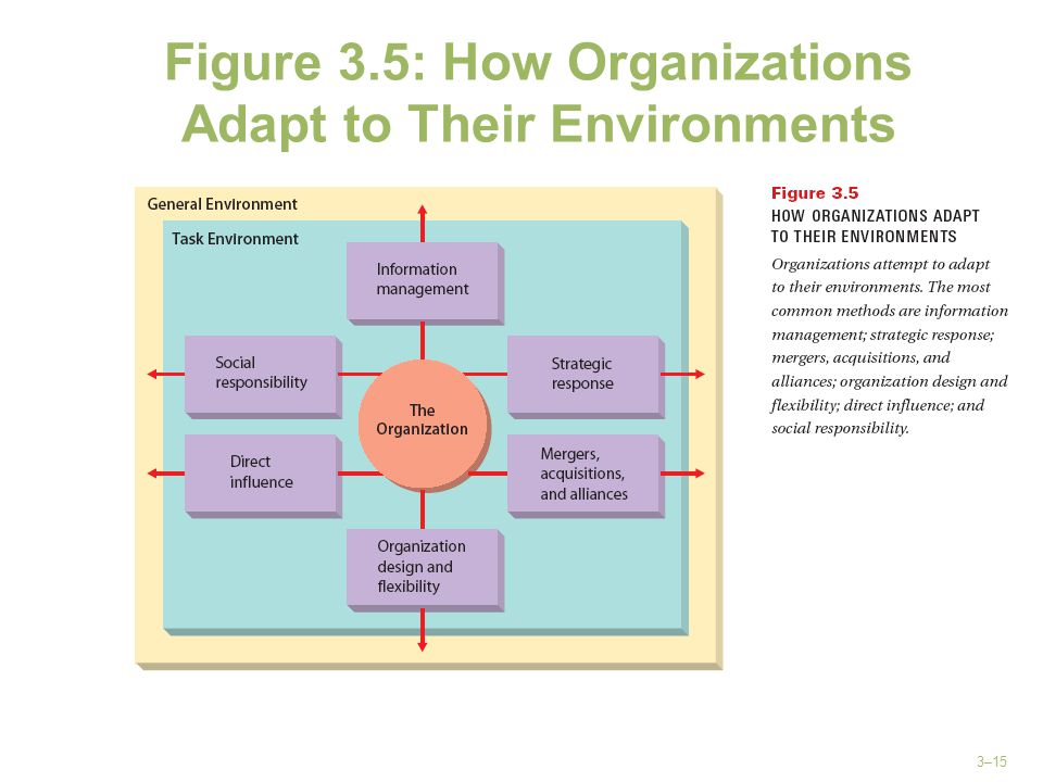 Figure 3.5: How Organizations Adapt to Their Environments