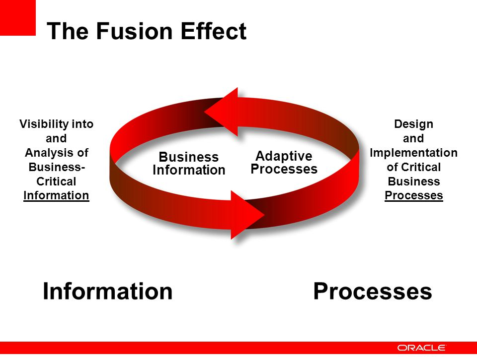 Implementation of Critical Business Processes