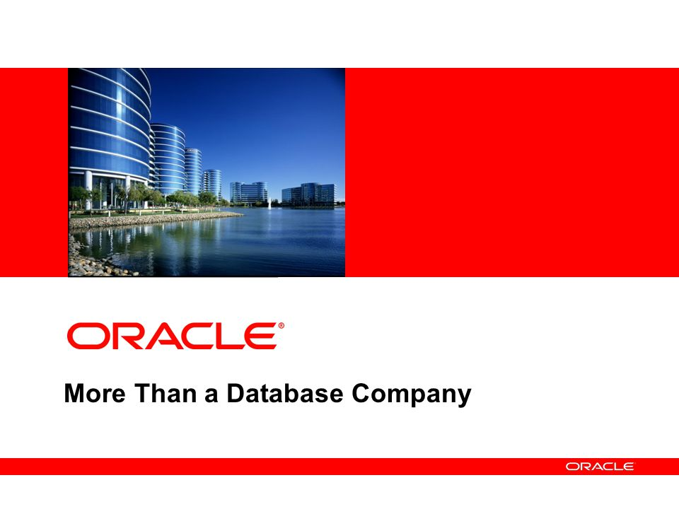 More Than a Database Company