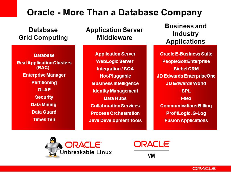 Oracle - More Than a Database Company