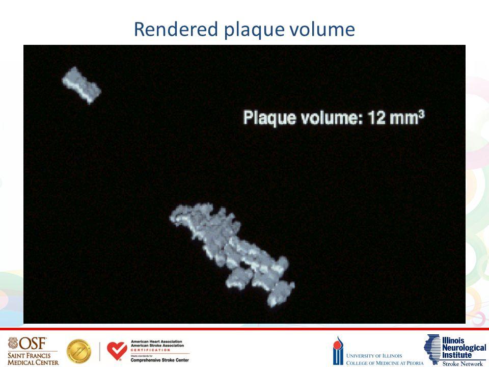 Rendered plaque volume