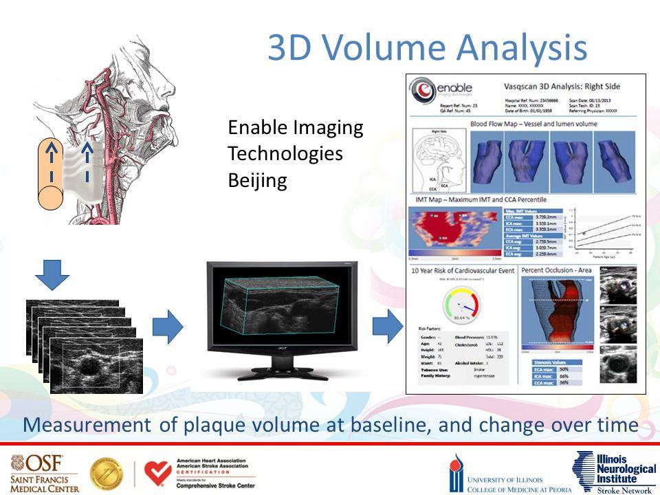 3D Volume Analysis Enable Imaging Technologies Beijing.