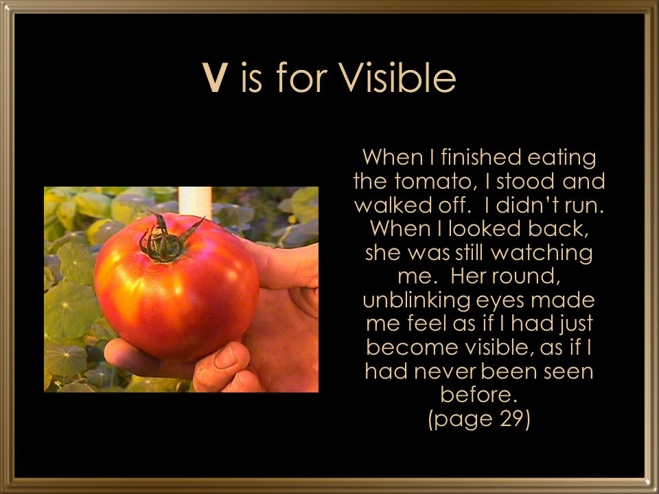 V is for Visible