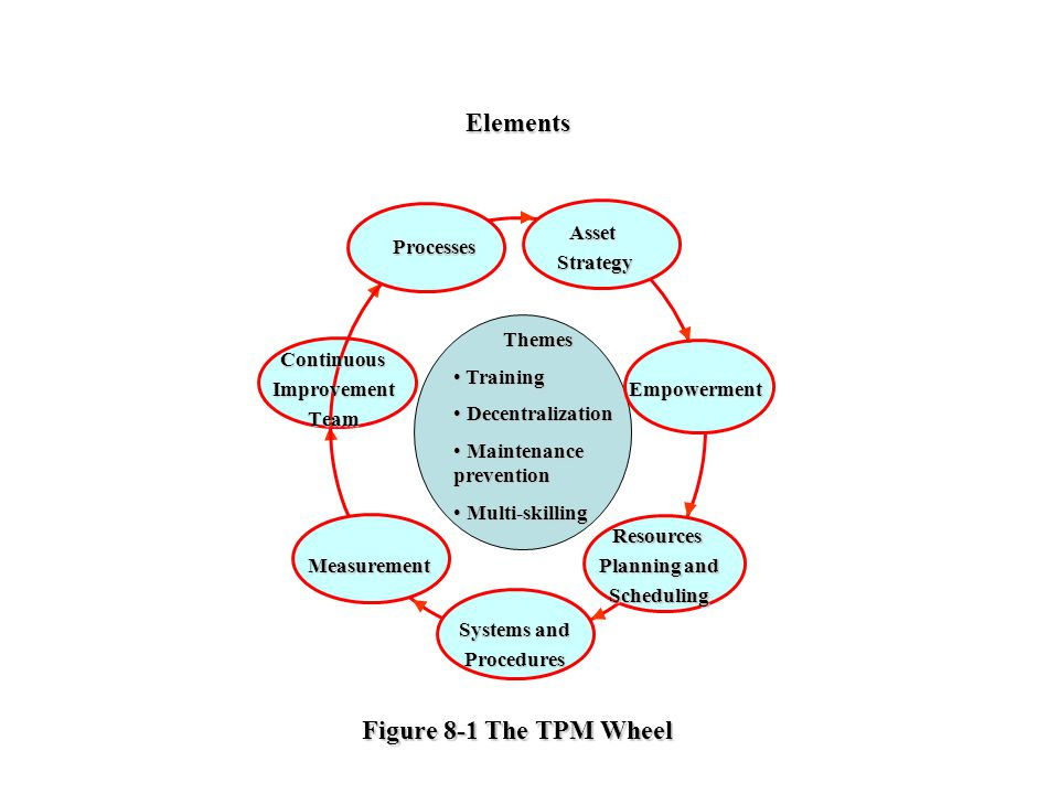 Elements Figure 8-1 The TPM Wheel Themes Training Decentralization