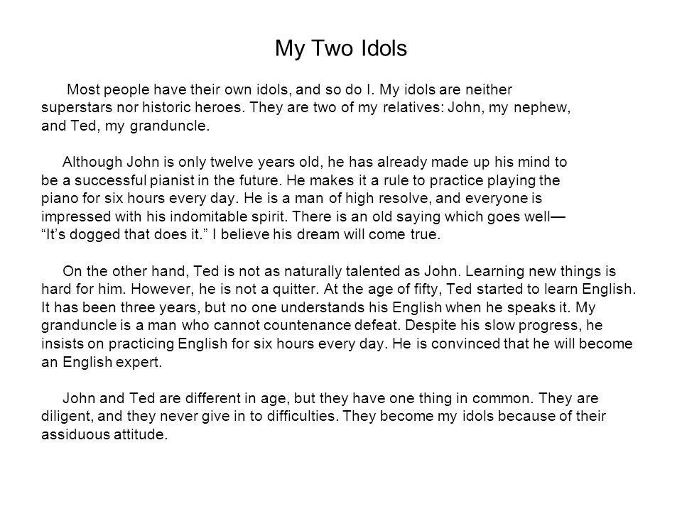 my idol essay
