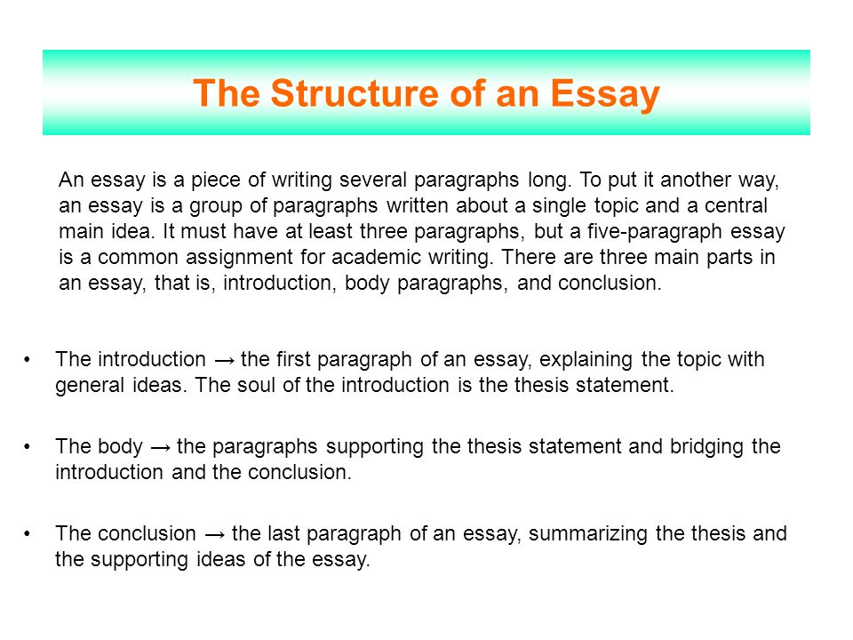 professional structure of an essay Profile essay a profile essay is a a profile essay does not have the same structure as a narrative essay or an argumentative essay professional voice.