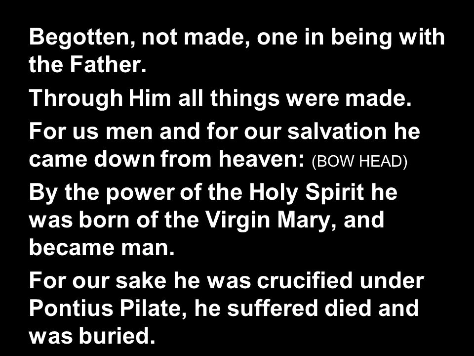 Begotten, not made, one in being with the Father.