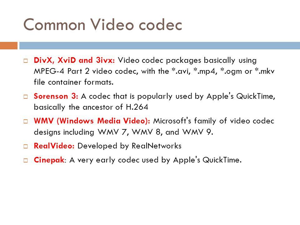 Common Video codec