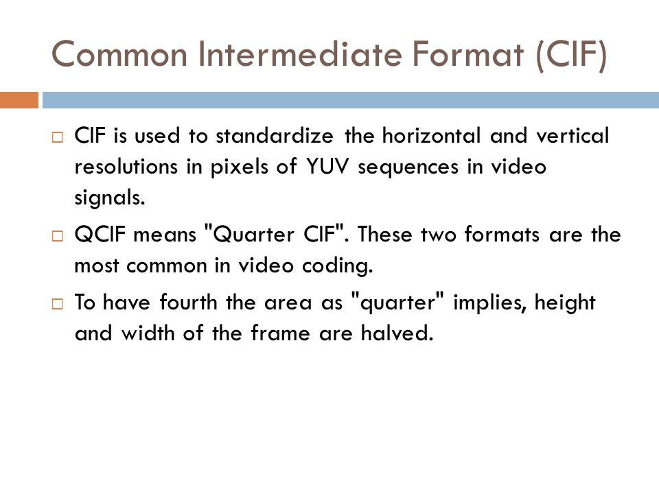 Common Intermediate Format (CIF)