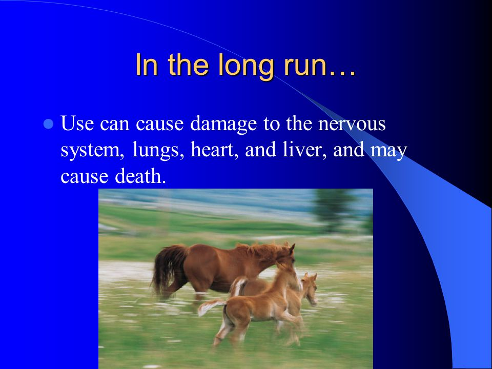 In the long run… Use can cause damage to the nervous system, lungs, heart, and liver, and may cause death.