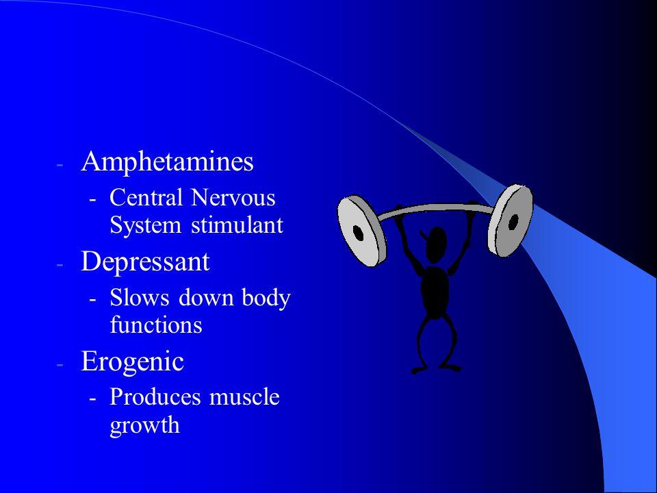 Amphetamines Depressant Erogenic Central Nervous System stimulant
